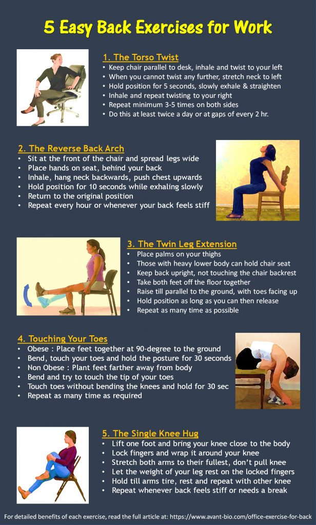 Easy Office Back Exercises